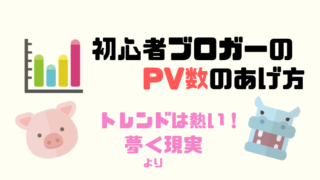 ブログ 初心者 PV
